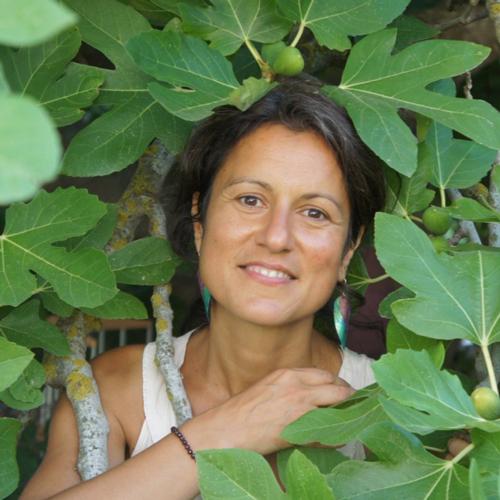 Anna Veneziani